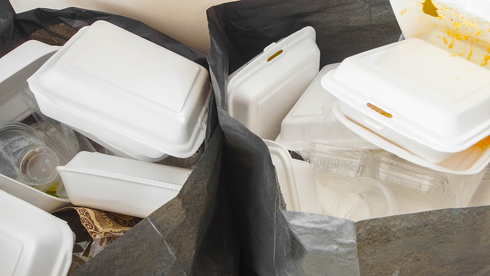 <h4>POLLUTION THAT LASTS FOR HUNDREDS OF YEARS</h4><h5>Polystyrene foam breaks apart easily, but it persists in the environment in tiny particles -- and every bit of it ever made is still out there and could continue to threaten wildlife for hundreds of years to come.</h5><em>wk1003mike / Shutterstock</em>